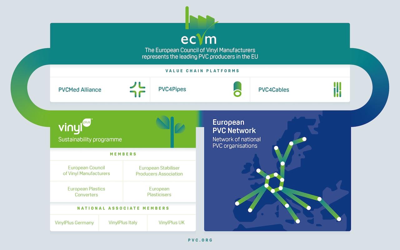 ECVM's organisation chart